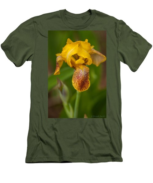 Yellow Bearded Iris Men's T-Shirt (Athletic Fit)
