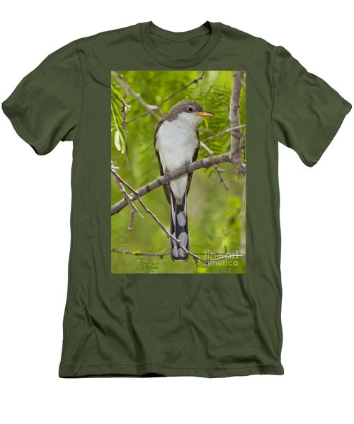 Yellow-billed Cuckoo Men's T-Shirt (Athletic Fit)