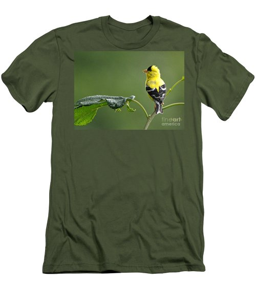 Men's T-Shirt (Slim Fit) featuring the photograph Yellow Finch by Nava Thompson