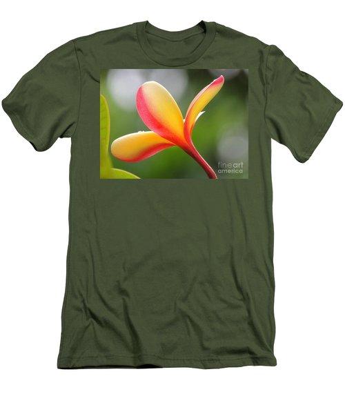 Yellow Pink Plumeria Men's T-Shirt (Slim Fit) by Kristine Merc