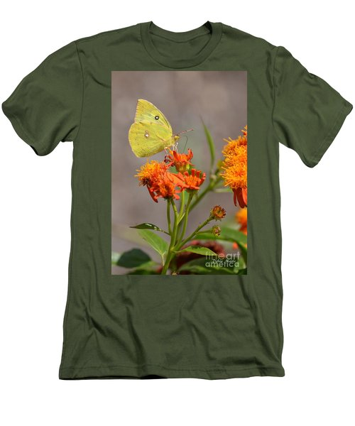 Yellow Sulphur Butterfly Men's T-Shirt (Slim Fit) by Debra Martz