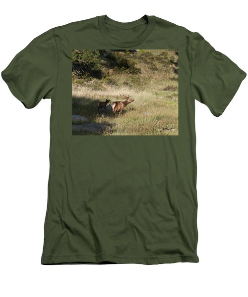 Young Bull Elk Men's T-Shirt (Athletic Fit)