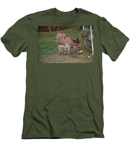 Young Donkey Eating Men's T-Shirt (Slim Fit) by Chris Flees
