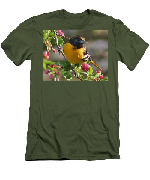 Young Male Oriole Men's T-Shirt (Slim Fit) by Bruce Bley