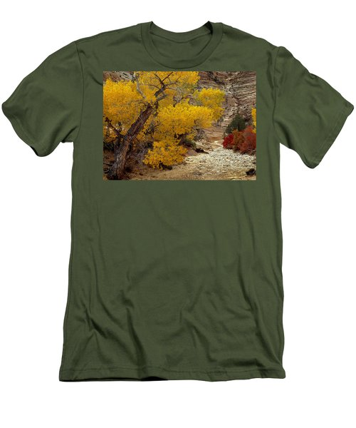Zion National Park Autumn Men's T-Shirt (Athletic Fit)