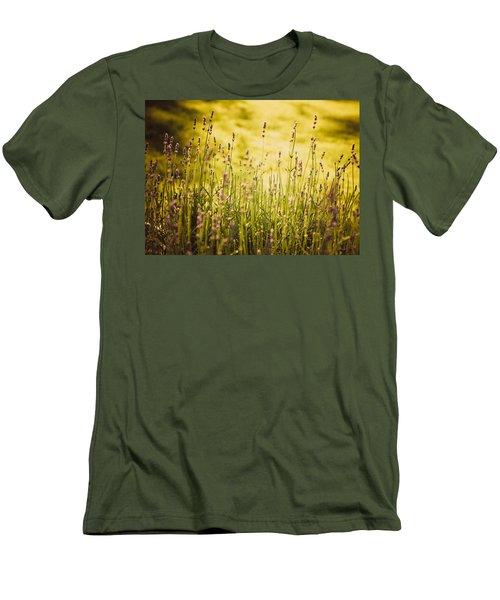 Lavender Gold Men's T-Shirt (Slim Fit) by Sara Frank