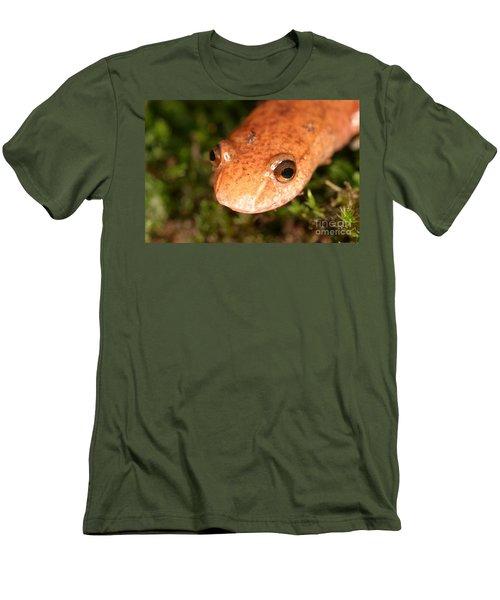 Spring Salamander Men's T-Shirt (Slim Fit) by Ted Kinsman