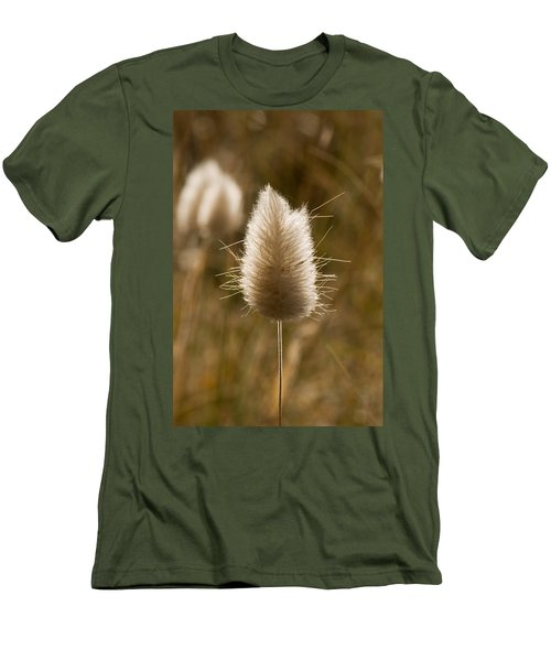 A Beautiful Seed Pod With Beautiful Sun Reflection Men's T-Shirt (Athletic Fit)