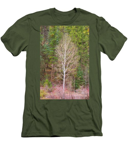 Aspen Tree Forest Road 249 Men's T-Shirt (Athletic Fit)