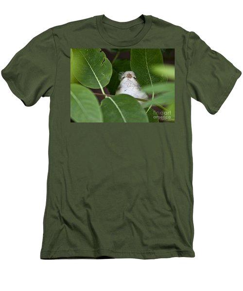 Baby Bird Peeping In The Bushes Men's T-Shirt (Slim Fit) by Jeannette Hunt