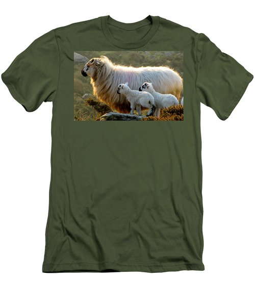 Baby-lambs Men's T-Shirt (Athletic Fit)