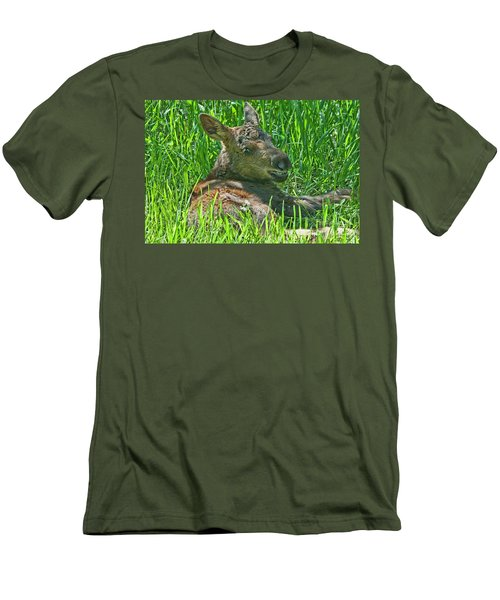 Baby Moose Men's T-Shirt (Athletic Fit)
