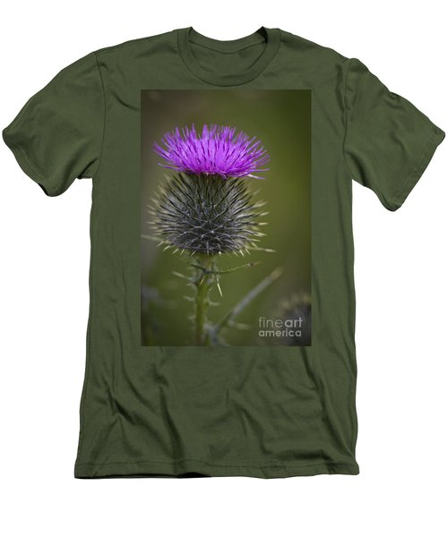 Blooming Thistle Men's T-Shirt (Athletic Fit)