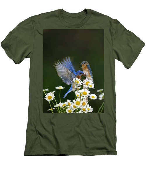 Men's T-Shirt (Slim Fit) featuring the photograph Bluebirds Picnicking In The Daisies by Randall Branham