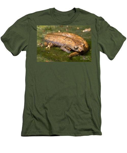 Bolitoglossine Salamander Men's T-Shirt (Athletic Fit)