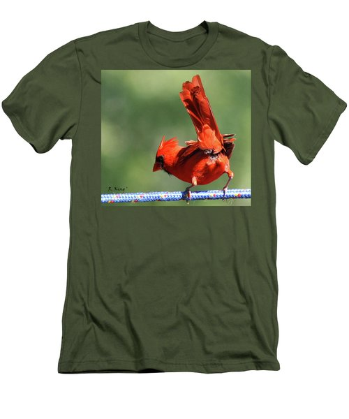Cardinal-a Picture Is Worth A Thousand Words Men's T-Shirt (Athletic Fit)