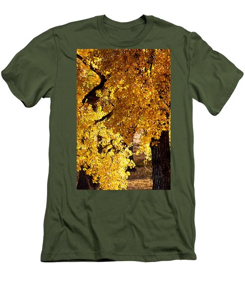 Colorado Gold Men's T-Shirt (Slim Fit) by Colleen Coccia