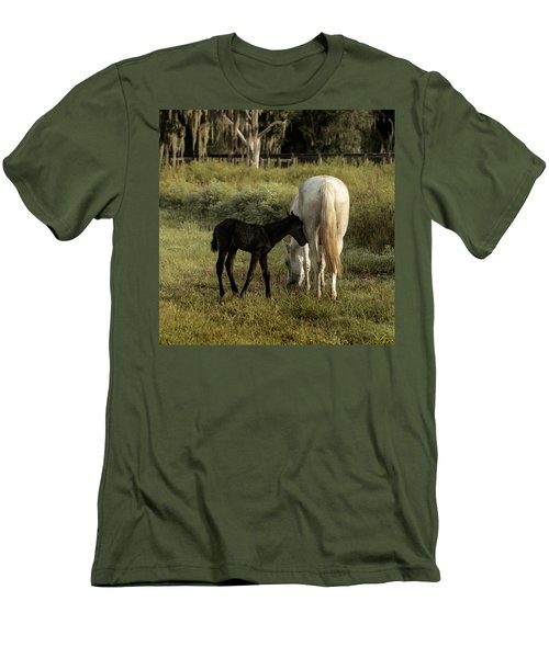 Cracker Foal And Mare Men's T-Shirt (Slim Fit) by Lynn Palmer
