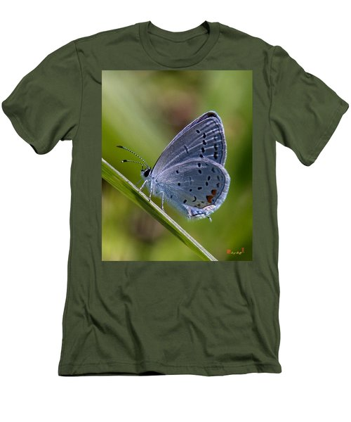 Eastern Tailed-blue Butterfly Din045 Men's T-Shirt (Athletic Fit)