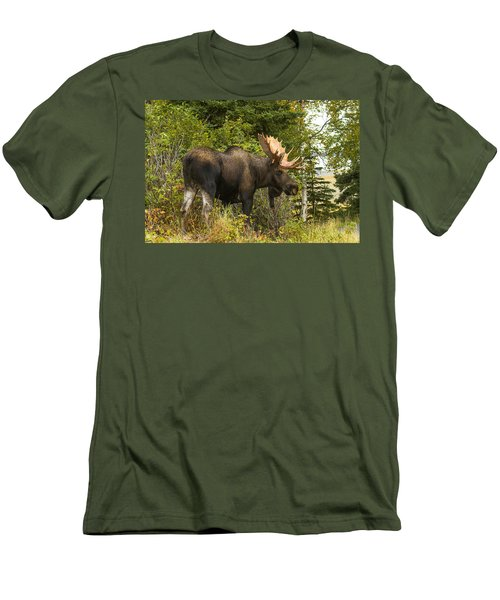 Men's T-Shirt (Slim Fit) featuring the photograph Fall Bull Moose by Doug Lloyd