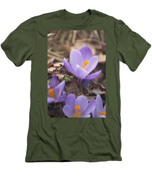 First Crocus Blooms Men's T-Shirt (Athletic Fit)