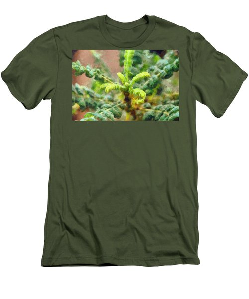 Frankincense Tree Leaves Men's T-Shirt (Athletic Fit)