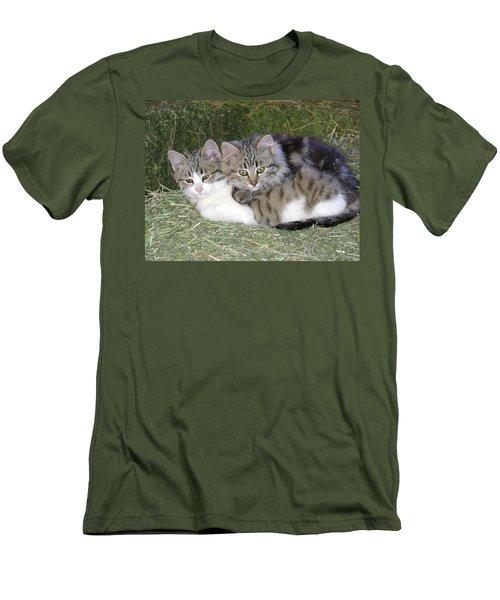 Haystack Buddies Men's T-Shirt (Athletic Fit)
