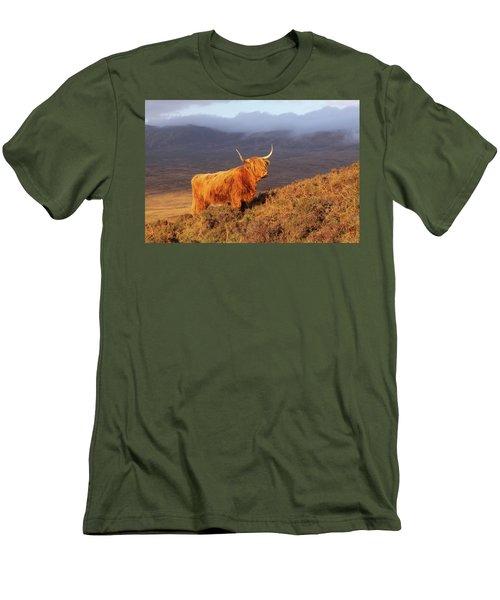 Highland Cattle Landscape Men's T-Shirt (Athletic Fit)