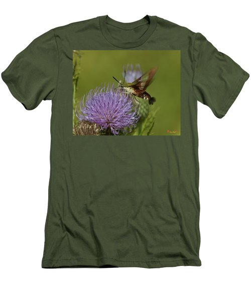 Hummingbird Or Clearwing Moth Din178 Men's T-Shirt (Athletic Fit)