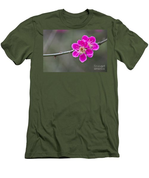Japanese Flowering Apricot. Men's T-Shirt (Athletic Fit)