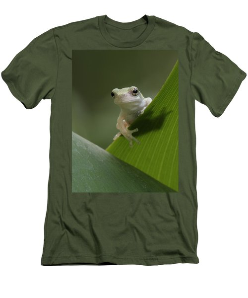 Men's T-Shirt (Slim Fit) featuring the photograph Juvenile Grey Treefrog by Daniel Reed