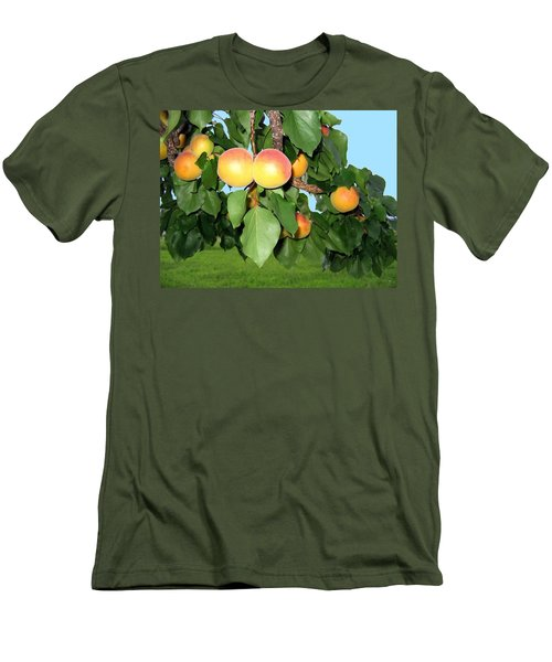 Men's T-Shirt (Athletic Fit) featuring the photograph Lake Country Apricots by Will Borden