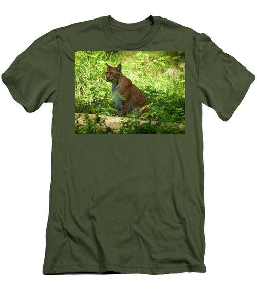 Lynx Men's T-Shirt (Athletic Fit)