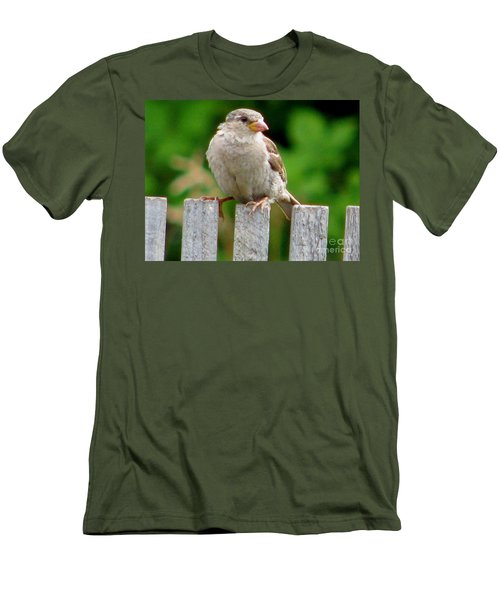 Morning Visitor Men's T-Shirt (Slim Fit) by Rory Sagner