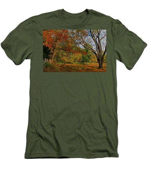 Old Tree And Foliage Men's T-Shirt (Athletic Fit)