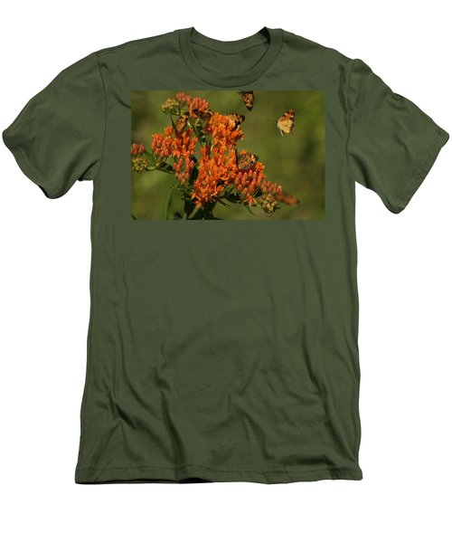 Pearly Crescentpot Butterflies Landing On Butterfly Milkweed Men's T-Shirt (Slim Fit) by Daniel Reed