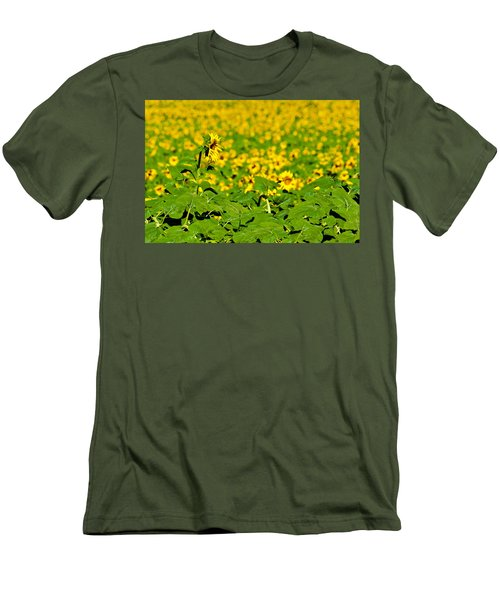 Peeking Above  Sea Of Yellow Men's T-Shirt (Slim Fit) by Colleen Coccia
