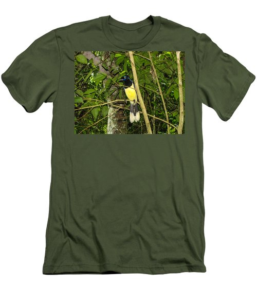 Men's T-Shirt (Slim Fit) featuring the photograph Plush-crested Jay by David Gleeson