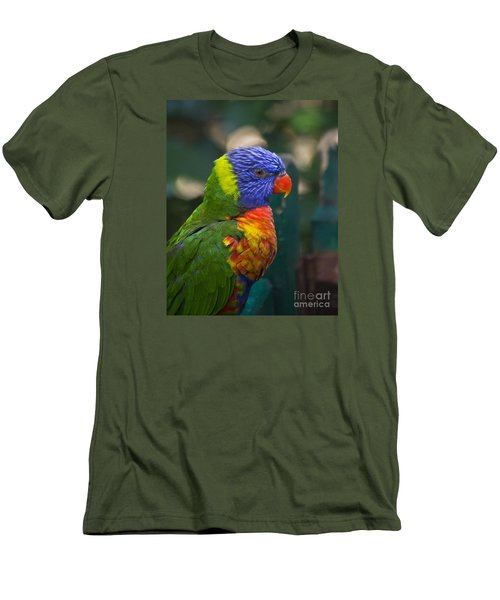 Posing Rainbow Lorikeet. Men's T-Shirt (Athletic Fit)