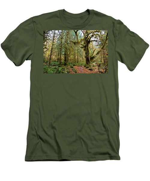 Rain Forest In Fall Men's T-Shirt (Athletic Fit)