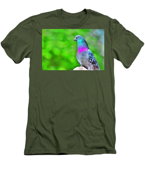 Rainbow Pigeon Men's T-Shirt (Athletic Fit)