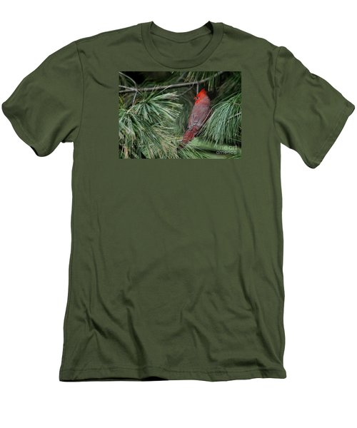 Men's T-Shirt (Slim Fit) featuring the photograph Red Cardinal In Green Pine by Nava Thompson