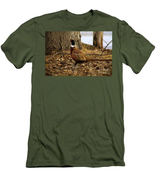 Ring-necked Pheasant Men's T-Shirt (Athletic Fit)