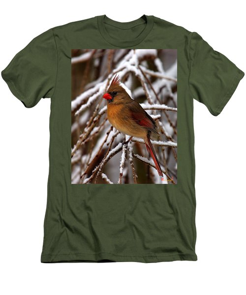 Men's T-Shirt (Slim Fit) featuring the photograph Snowbirds--cardinal Dsb025 by Gerry Gantt