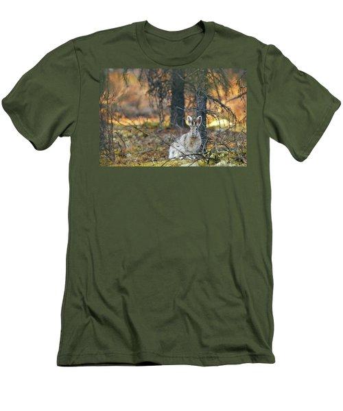 Snowshoe Hare Men's T-Shirt (Athletic Fit)