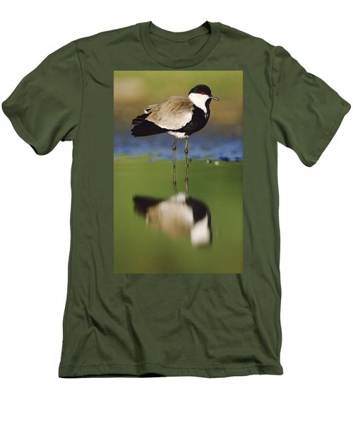 Spur Winged Plover With Its Reflection Men's T-Shirt (Slim Fit) by Tim Fitzharris