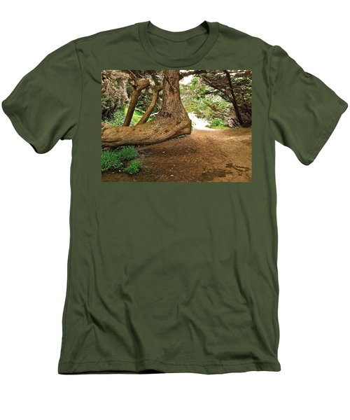 Tree And Trail Men's T-Shirt (Slim Fit) by Bill Owen