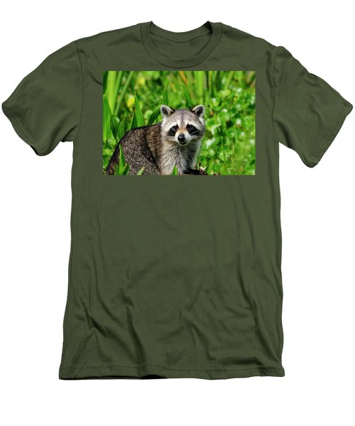 Wetlands Racoon Bandit Men's T-Shirt (Athletic Fit)