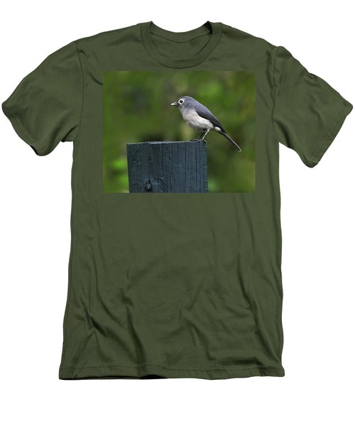 White-eyed Slaty Flycatcher Men's T-Shirt (Athletic Fit)