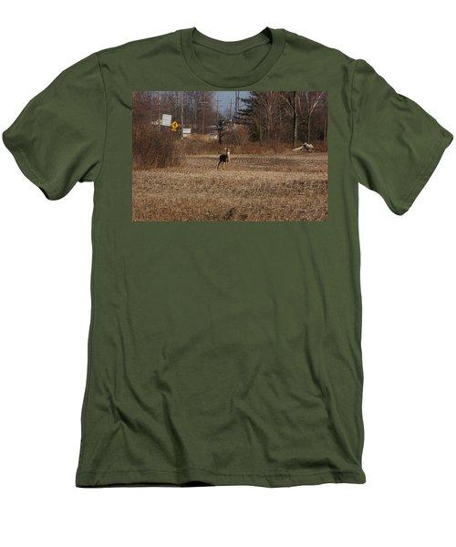 Whitetail Deer Men's T-Shirt (Slim Fit) by Randy J Heath